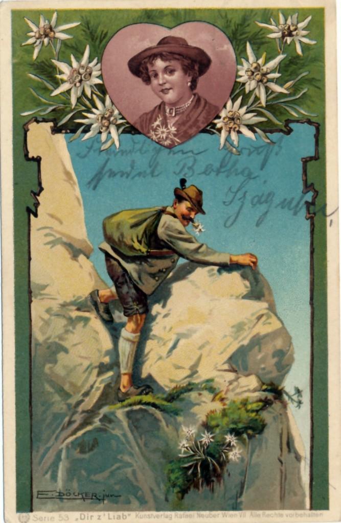 Postkarte mit Edelweißpflücker, um 1900. (Bild: DAV/Archiv)